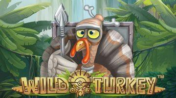 Wild Turkey Slot by NetEnt Review – Crazy, wild Aztec birds